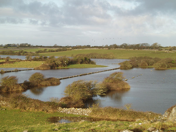 turlough-Ballinacourty